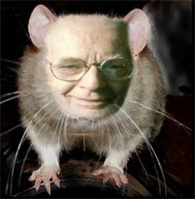 Bf Photo B F Skinner you dirty rat
